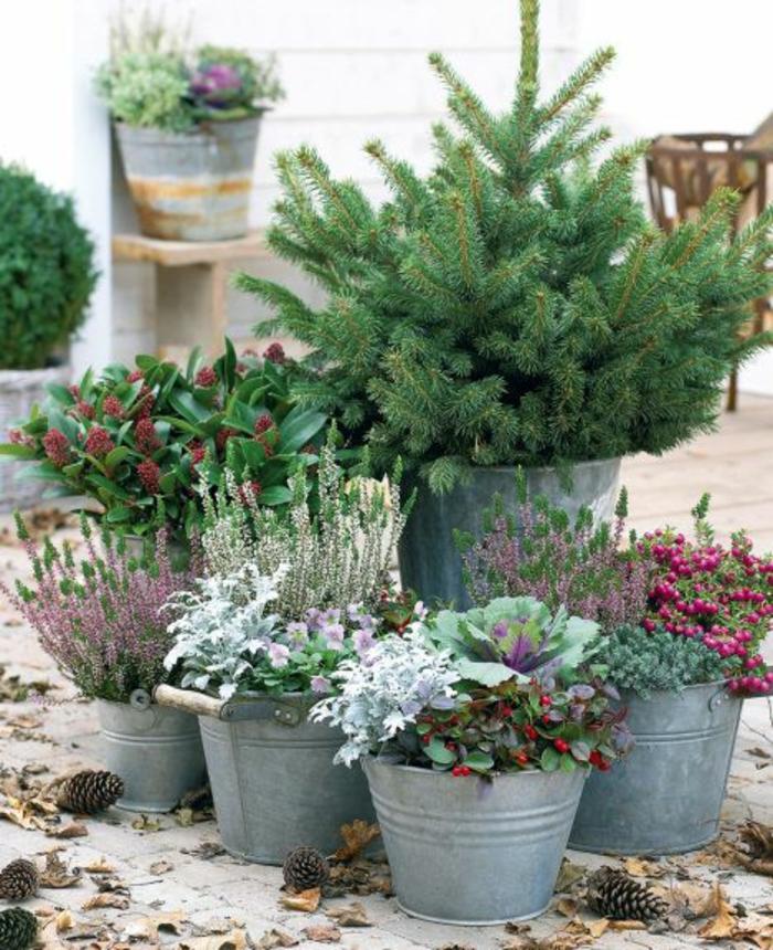 gartengestaltung mit topf pflanzen metalleimer blumentöpfe