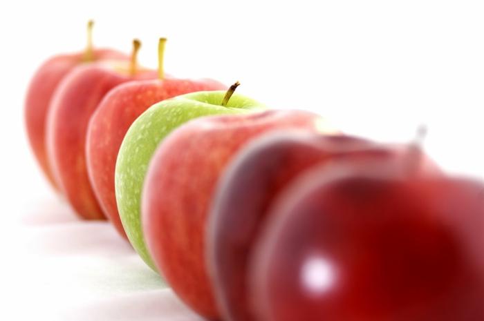 gesundes essen bio produkte gesundheit lifestyle