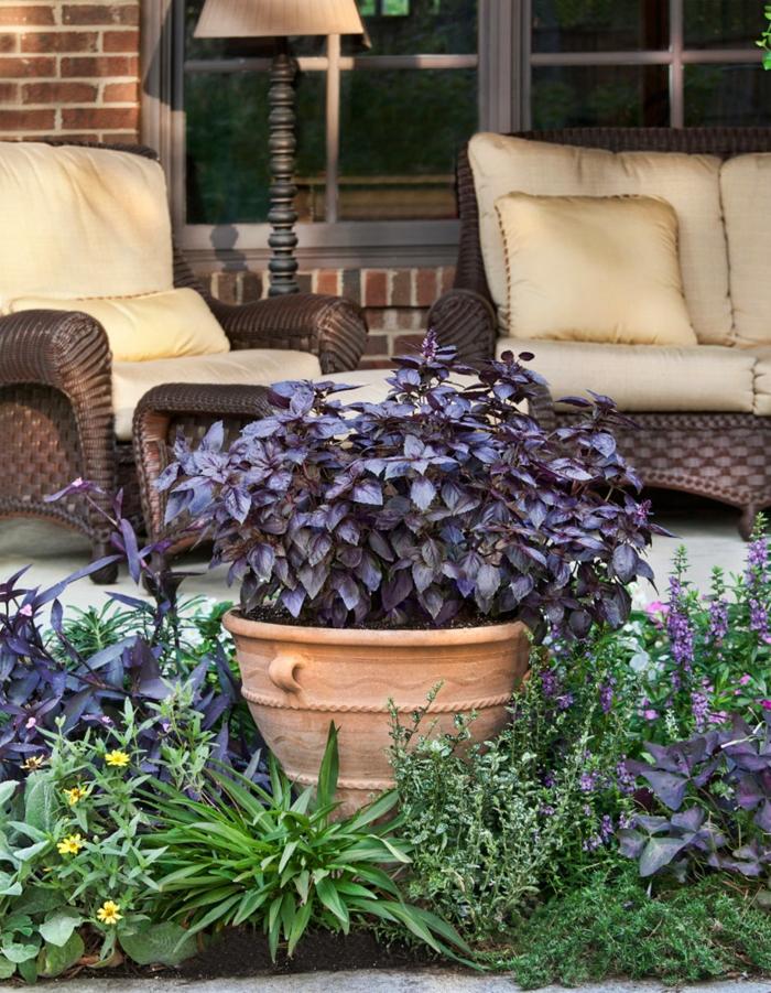 große pflanzkübel garten pflanzen gartenmöbel