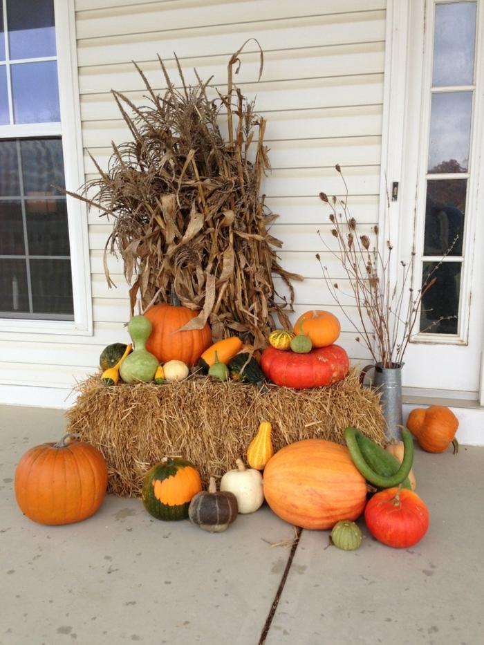 halloween deko kürbisse außenbereich dekorieren