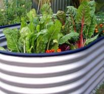 Hochbeet im Garten – Eine schöne Idee, wie Sie den Garten gestalten