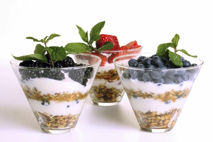 ist joghurt gesund naturjoghurt obstjoghurt mythen