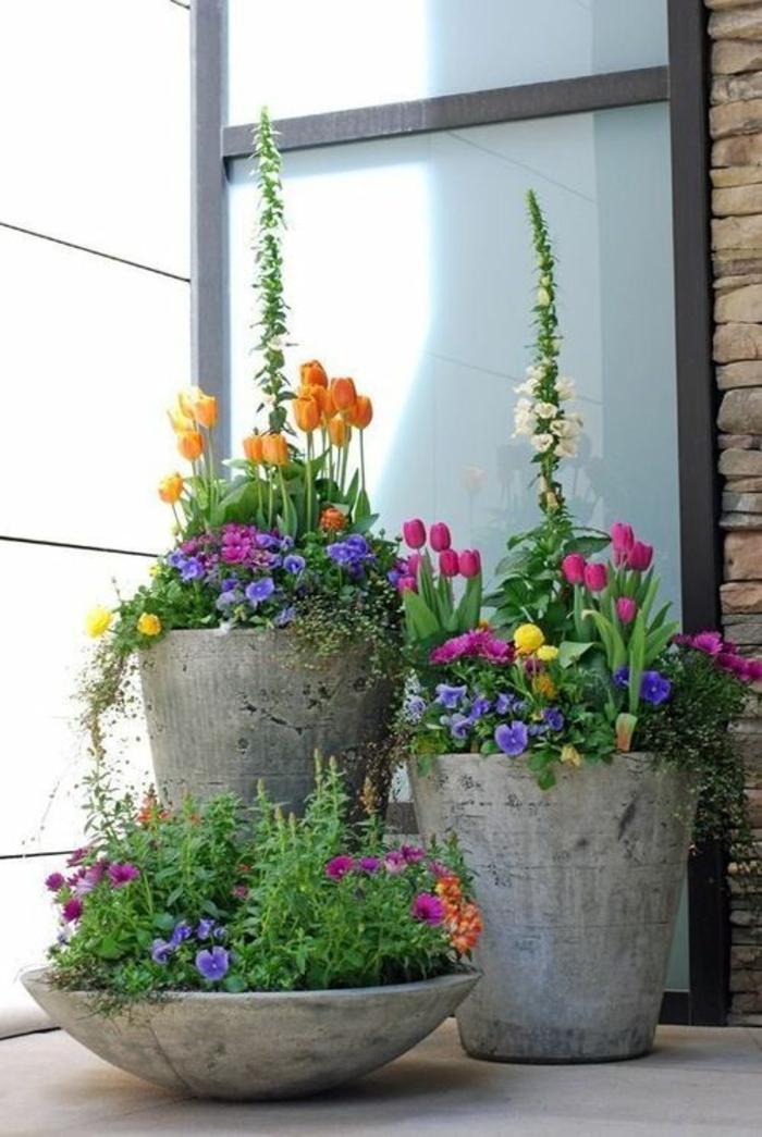 kübelpflanzen im garten gartengestaltung beton kübel topfpflanzen