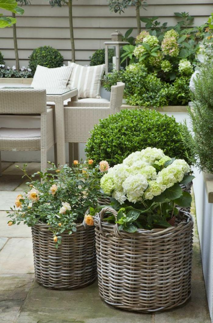 kübelpflanzen korbkasten balkonpflanzen gestaltungsideen
