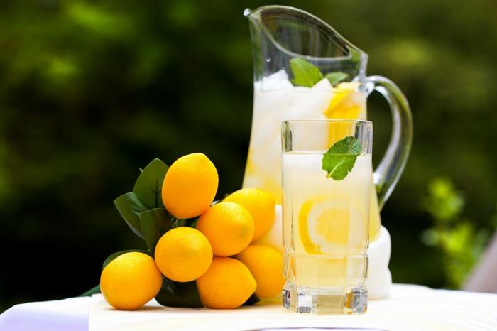 limonade selber machen frische minze kanne