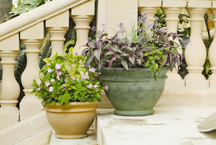 pflanzkübel design treppe außentreppe dekorieren