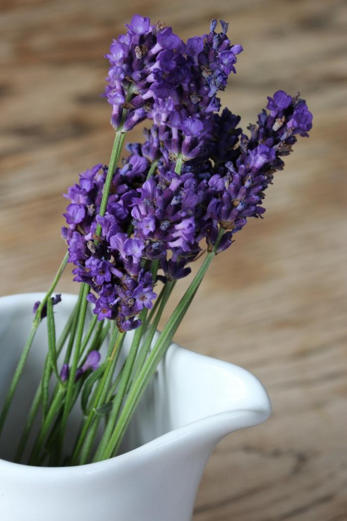 stress abbauen lavendel duft tipps lifestyle