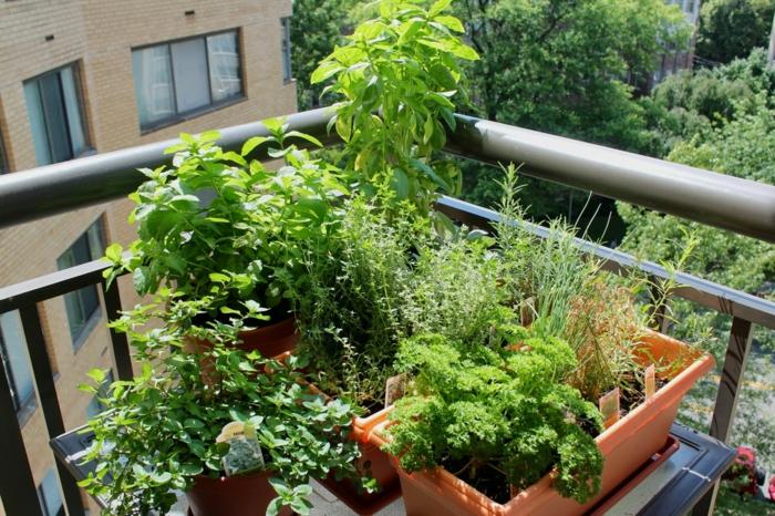 terrasse gestalten garten kräuter außenbereich ideen