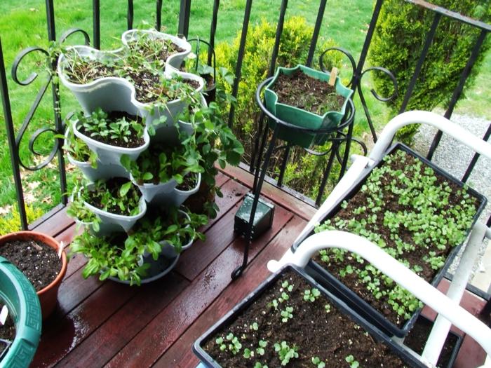 terrasse gestalten ideen gemüse züchten