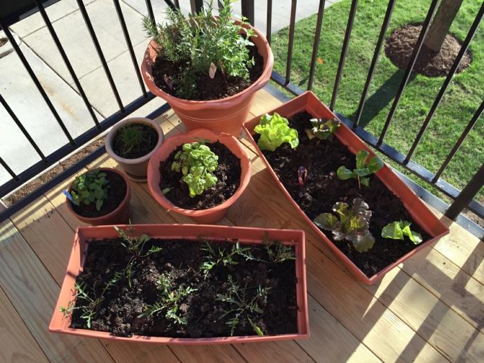 terrasse gestalten kräuter züchten garten  gestalten