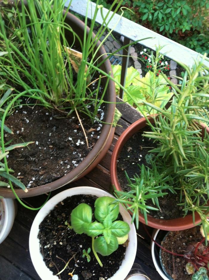 terrasse gestalten schöne ideen pflanzen garten