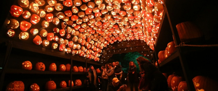 Ideen für Halloween licht
