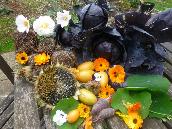 Ideen für Halloween samhain festival Ideen für Halloween deko halloween geschichte kuerbislaterne basteln