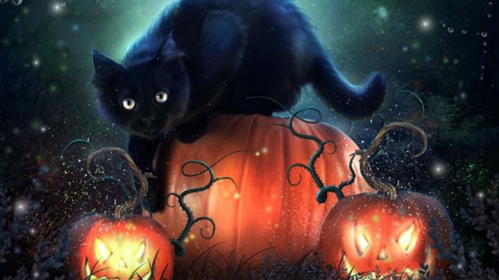 Ideen für Halloween schwarze katze Ideen für Halloween deko halloween geschichte kuerbislaterne basteln