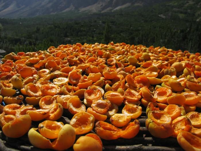 Kalzium getrocknete aprikosen