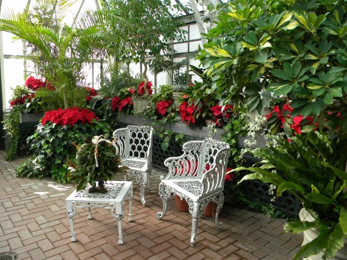 Wintergarten einrichten typisch