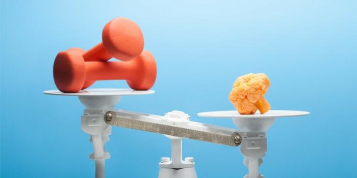 abnehmen ohne sport und diät frisches gemüse gesunde ernährung