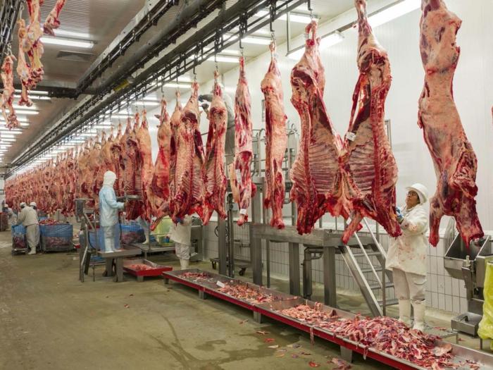 bio fleisch frisch massentierhaltung ungesund