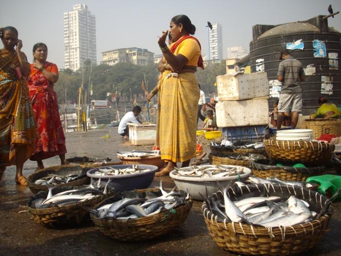 bombay indien mumbai fischermarkt