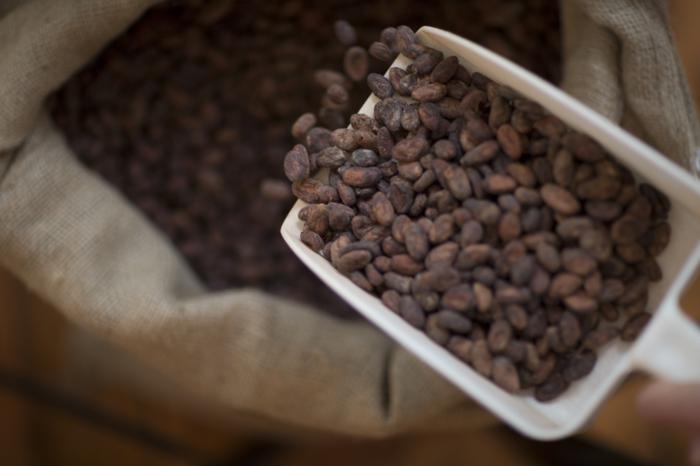 fairtrade schokolade kakaobohnen wertvoll