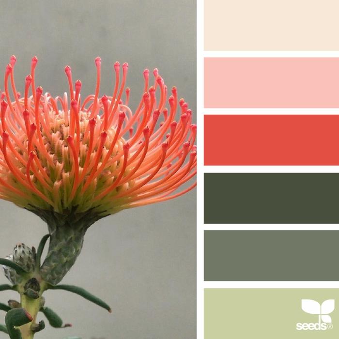 farbpalette flora farben @auntieclaras