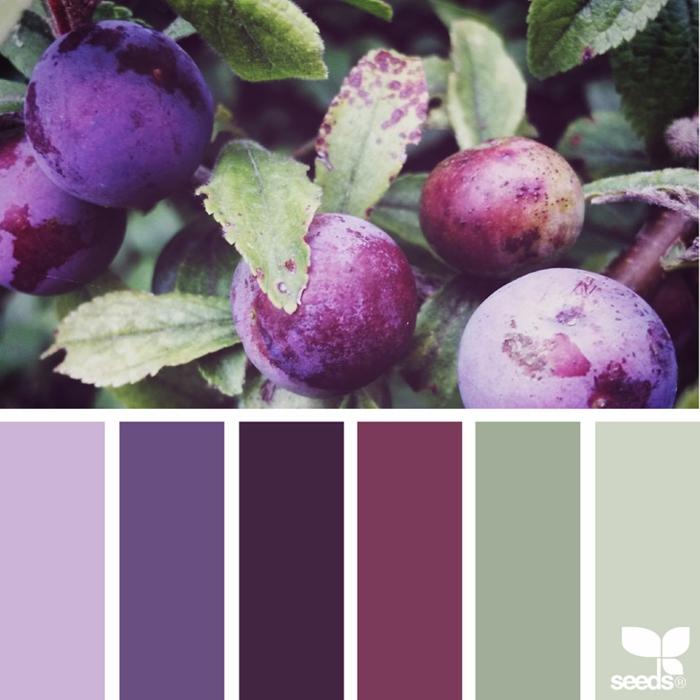 farbpalette fresh farbe @_ewabakrac