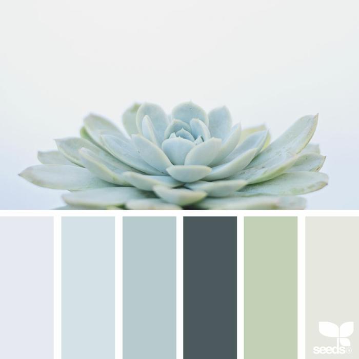 farbpalette sukkulenten farben @1lifethroughthelens