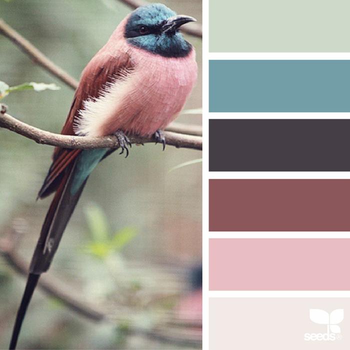 farbpalette vogelfarben @magimare