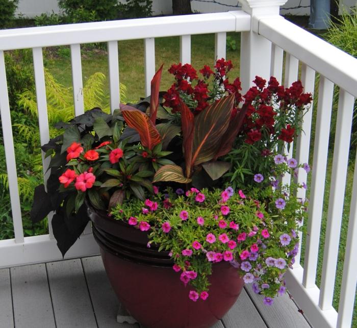 K belpflanzen bringen stimmung und stil mit for Topfpflanzen dekorieren