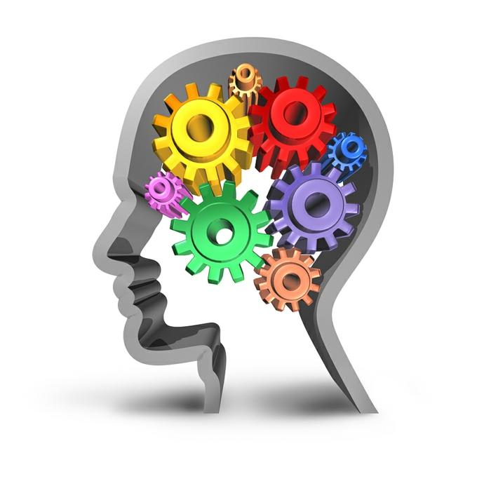 gedächtnis trainieren mechanismus altes vergessen neues erfahren