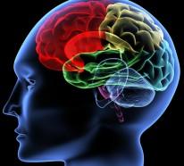 Gedächtnisübungen – Trainieren Sie Ihr Gedächtnis, indem Sie es besser verstehen