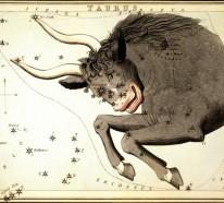 Horoskop Stier für den Herbst 2015: Was sagen die Sterne?
