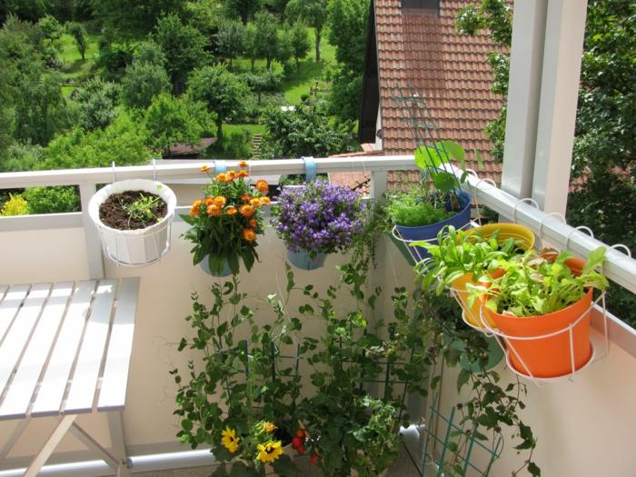 kübelpflanzen balkon dekoideen balkongeländer balkontisch