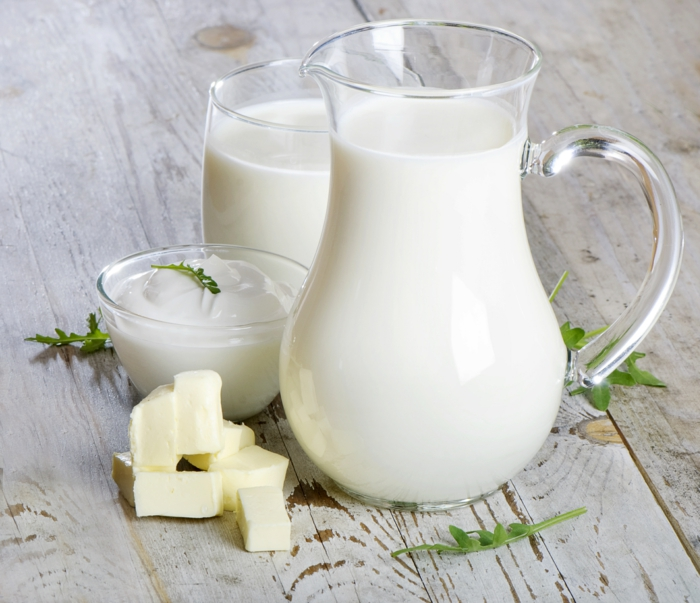 lebensmittel mit kalzium milchprodukte vitamin D lebensmittel
