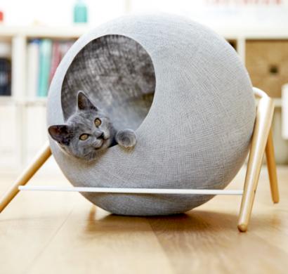 Katzenmöbel katzenmöbel meyou sind zugleich schicke wohnaccessoires