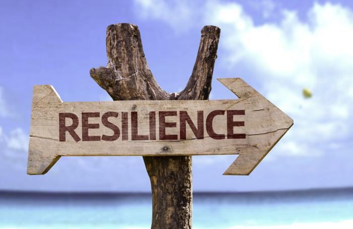 resilienz definition den weg finden