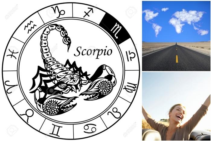 horoskop skorpion das sagen die sterne im herbst 2015