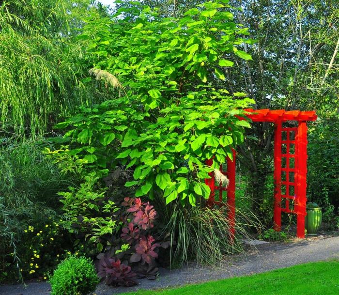 trompetenbaum park garden