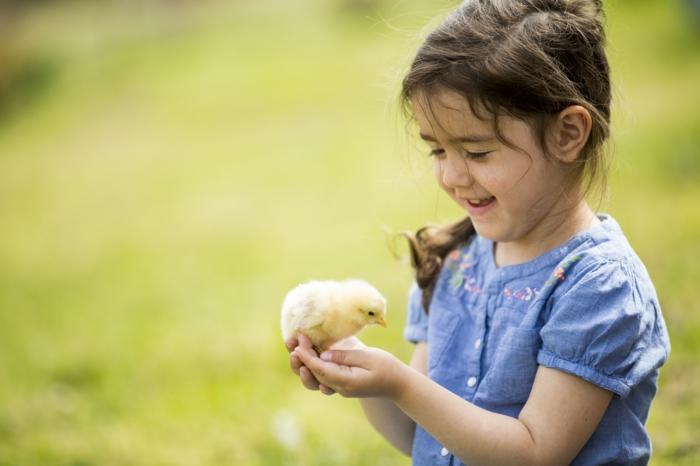 veganes essen küken mädchen tierlieb