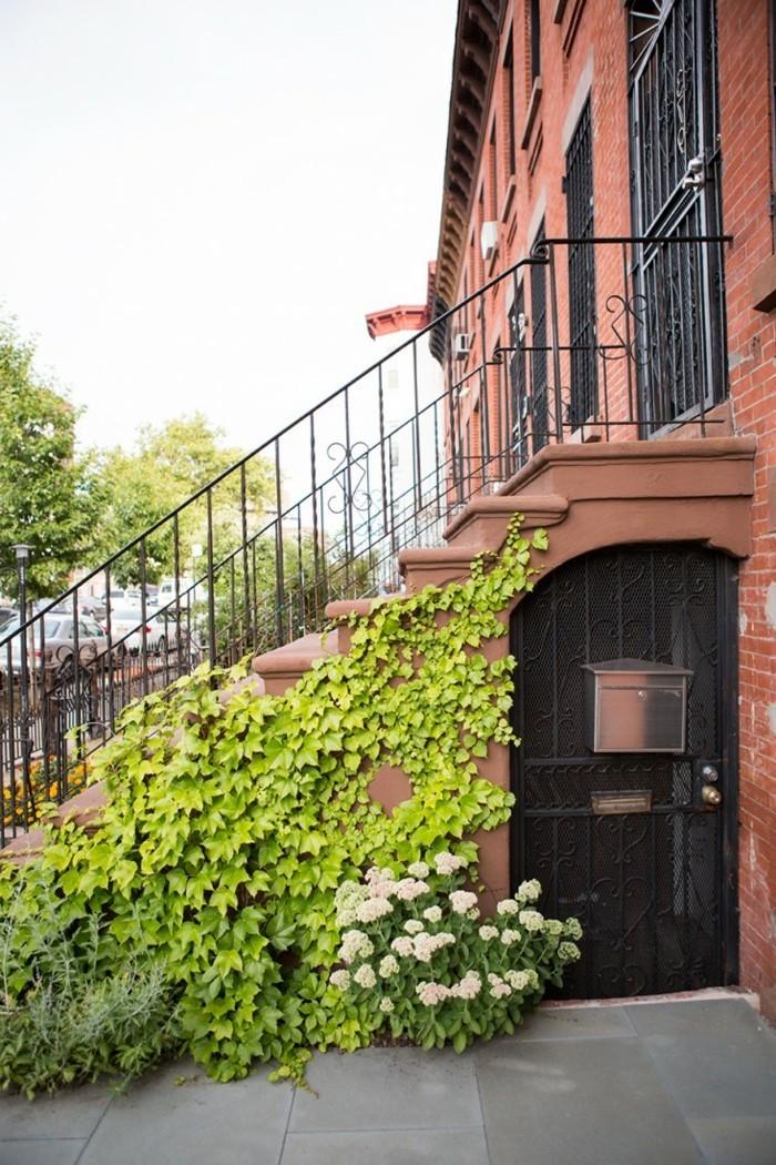 vorgarten gestaltung die hausfadssade mit kletterpflanzen verschönern
