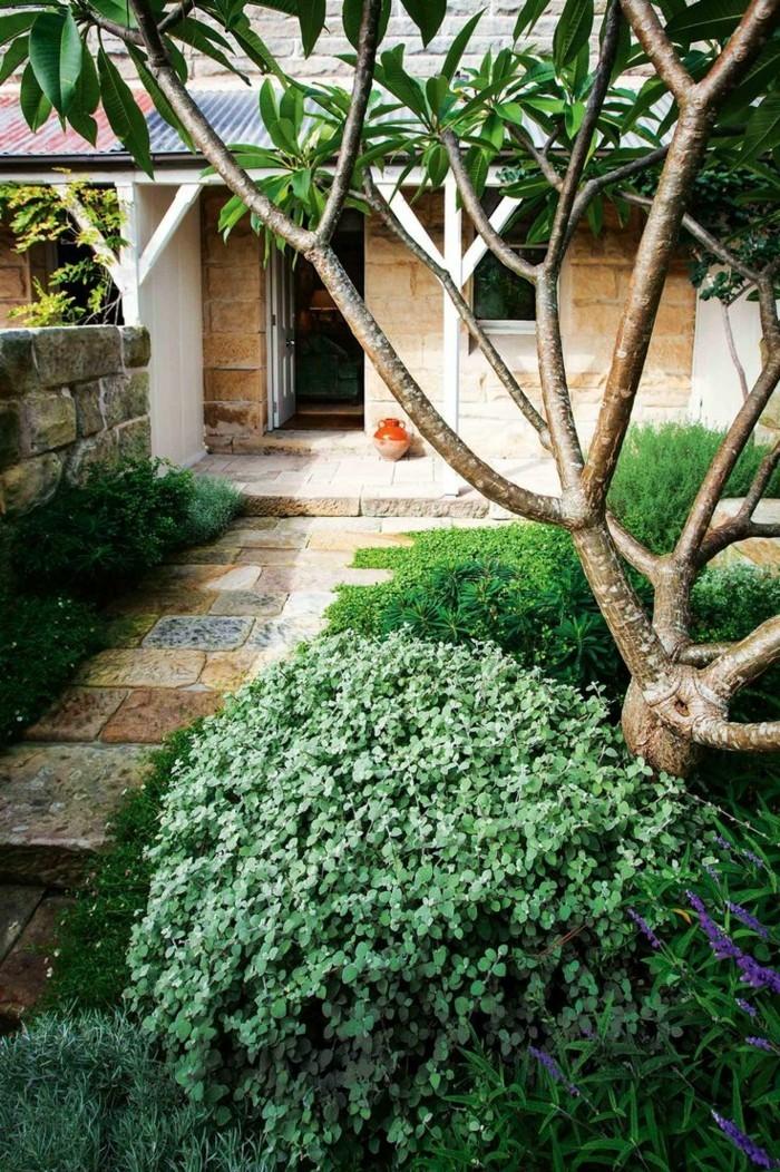 vorgarten gestaltung reichliche bepflanzung und steintreppen