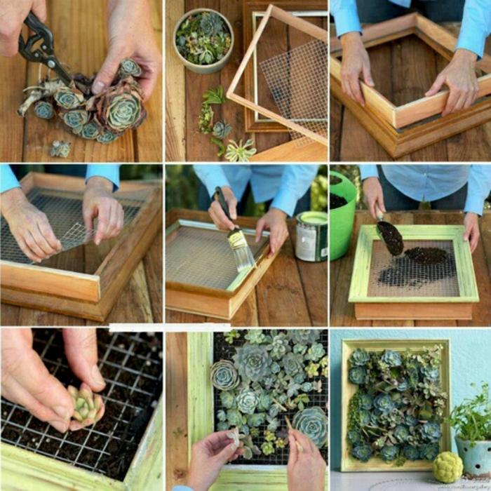 projeto paredes DIY suculentas de jardim verticais fio