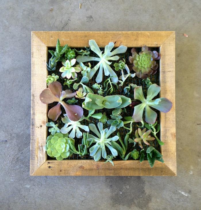 design paredes diy vertical mini jardim suculentas moldura de madeira pequena