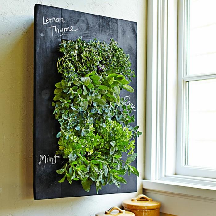 projetar paredes quadro de giz de ervas frescas