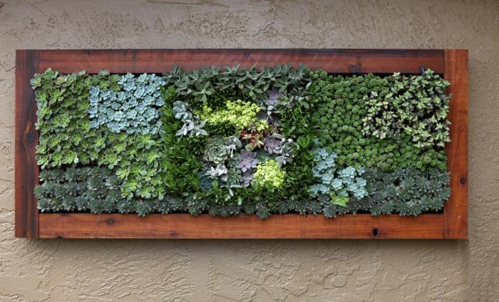 design paredes com moldura de madeira suculentas retangulares