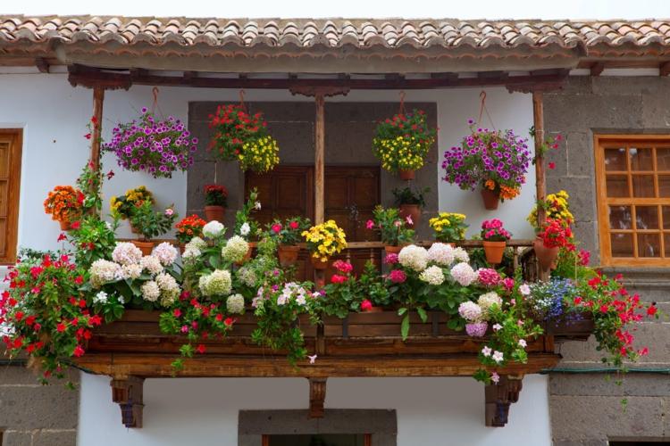 Balkon dekorieren pflegeleichte Balkonpflanzen Balkon Ideen