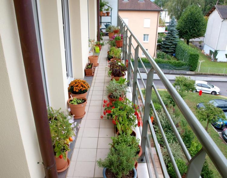 60 inspirierende balkonideen so werden sie einen for Topfpflanzen dekorieren