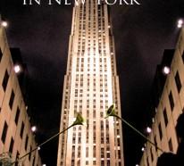 Weihnachten in New York: Genießen Sie die Weihnachtszeit in der Weltmetropole