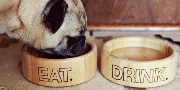 Weihnachtsgeschenke selber machen DIY Projekte Hundenapf