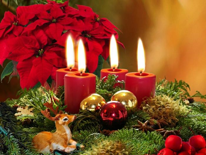 adventskranz ideen nuesse zucker teelicht ingwer schnee schleife